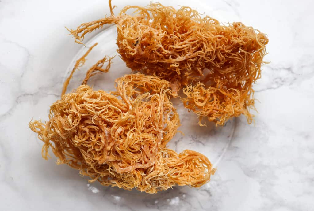 Dried Raw Irish Sea Moss